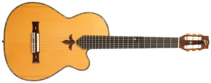 Certified Genius The Guitars Of Chet Atkins Reverb News