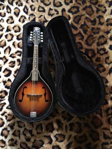 Rogue RM-100 A A-Style Mandolin w/ Case image