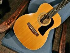 Washburn F12 Folk Guitar: Bluesy 80s Acoustic image