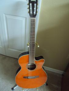 Ibanez AEG10NE Nylon String Cutaway Acoustic-Electric Guitar image