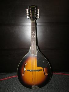 Gretsch G9300 New Yorker Standard Mandolin  Sunburst image