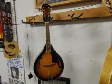 Orleans Mandolin with Gig Bag demo Model image
