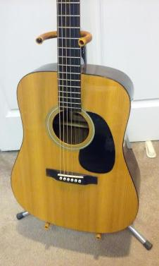 Recording King RD07 Solid Top Dreadnought Acoustic Guitar & Gig Bag image