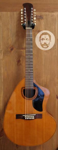 Giannini AWKS-12 12 String Acoustic guitar w/ OHSC image