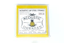 Asher Acoustic Hawaiian Lap Steel Strings 2015 for Weissenborn, 6 string acoustic lap steel image