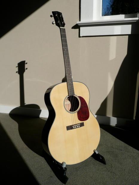 Gold Tone Resonator Guitar Gold Tone Tg-10 Tenor Guitar