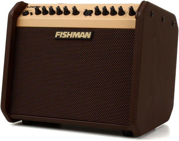 Acoustic Guitar Amp With Mic Input : fishman loudbox mini acoustic guitar amp w mic input pro lbx 500 mint orig box w all ~ Vivirlamusica.com Haus und Dekorationen