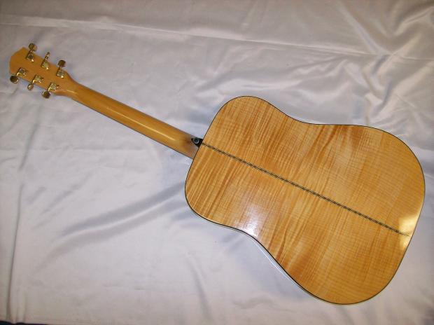 Fender dg22s ebony nat
