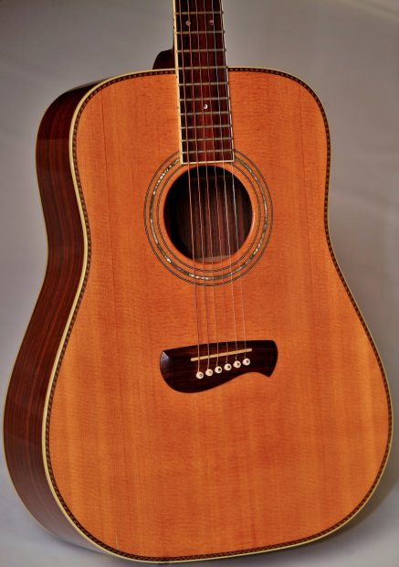 Tacoma Dr20 Guitar Solid Spruce Top Rosewood Back