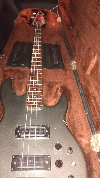 peavey dyna bass grey ohsc made in usa reverb. Black Bedroom Furniture Sets. Home Design Ideas