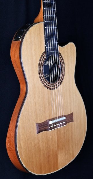 gibson chet atkins ce an solid body nylon string acoutstic electric reverb. Black Bedroom Furniture Sets. Home Design Ideas