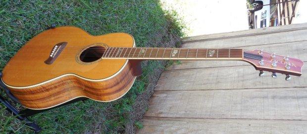 tacoma guitar logo 2138971 academiasalamancainfo