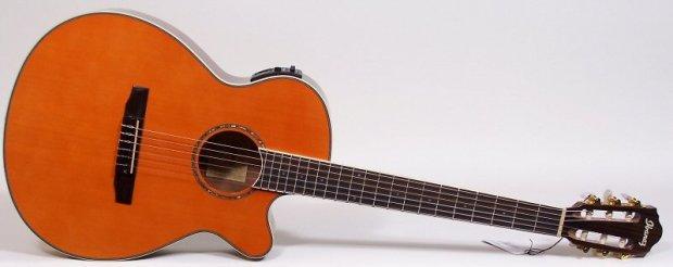 ibanez aeg10nii classical nylon cutaway acoustic electric guitar tangerine gloss reverb. Black Bedroom Furniture Sets. Home Design Ideas