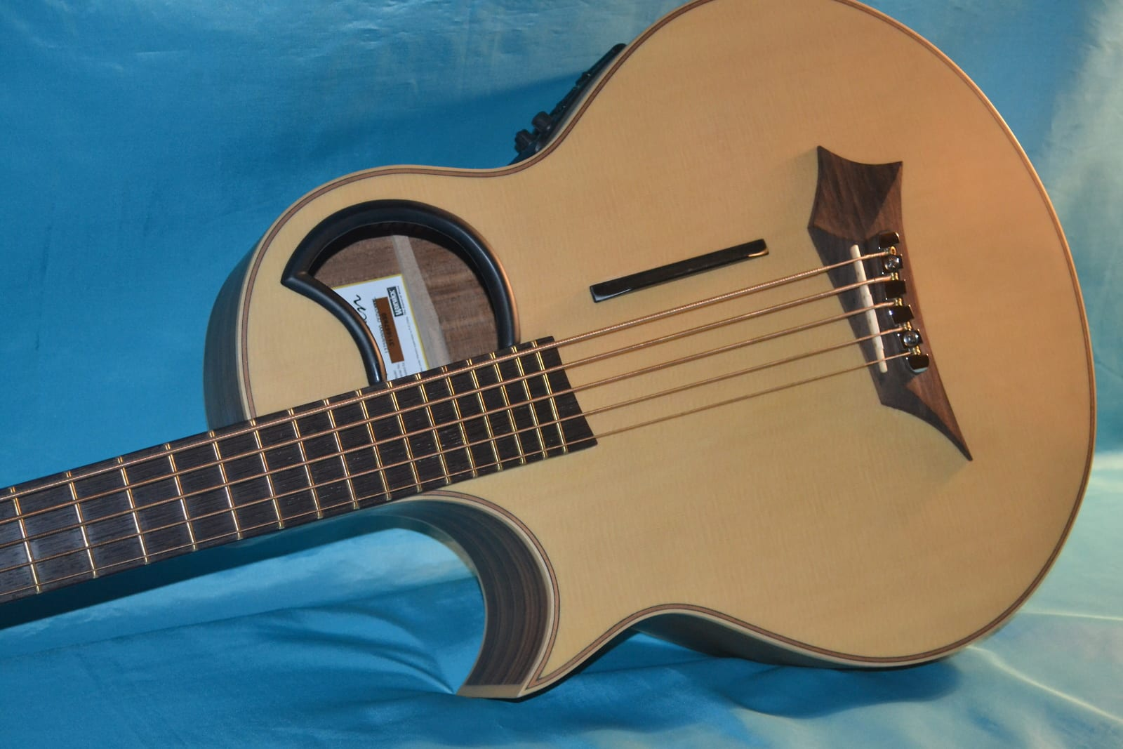 Warwick Alien 5 Left Hand Acoustic Electric 5 String Bass with Hard Shell Case