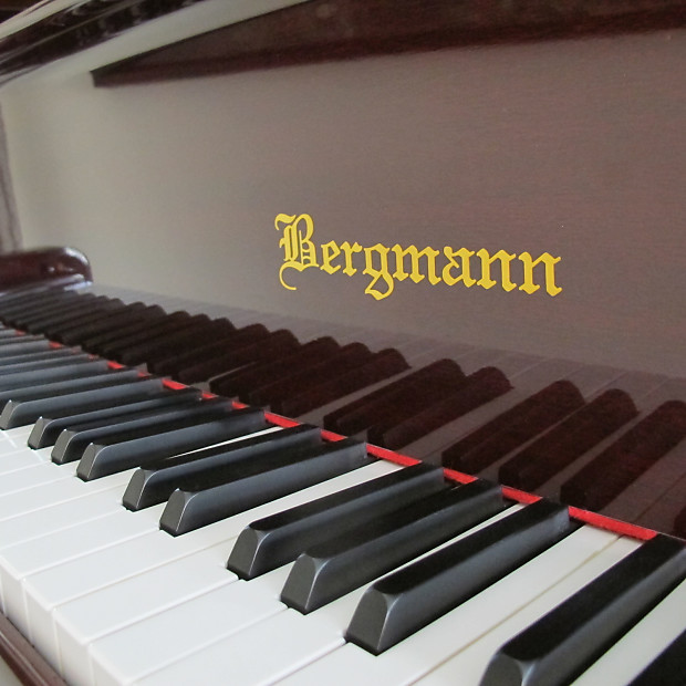 Bergmann By Young Chang Tg 150 W Pianodisc Player System