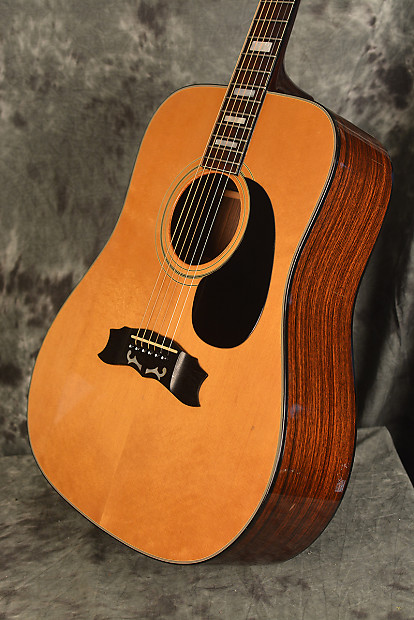 Ibanez Collectors World Acoustic Guitars
