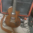 "Gibson ""The Paul"" '79 w/ Lace Dirty Heshers image"