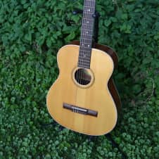 Vintage 1960's Espana SL-12 Classical Guitar Closet Classic Condition Made In Sweden image