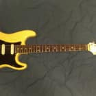 """Fernandes FST-65 """"The Function"""" Electric Guitar image"""