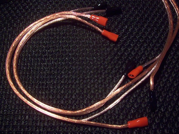 Guitar Speaker Wiring Harness : Earcandy guitar speaker cab wiring harness