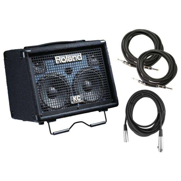 Korg Keyboard Amplifiers : korg kc 110 30 watt battery powered keyboard amplifier bundle reverb ~ Vivirlamusica.com Haus und Dekorationen