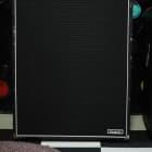 Ampeg SVT-610HLM 2000s 6x10 Black Bass Cabinet image