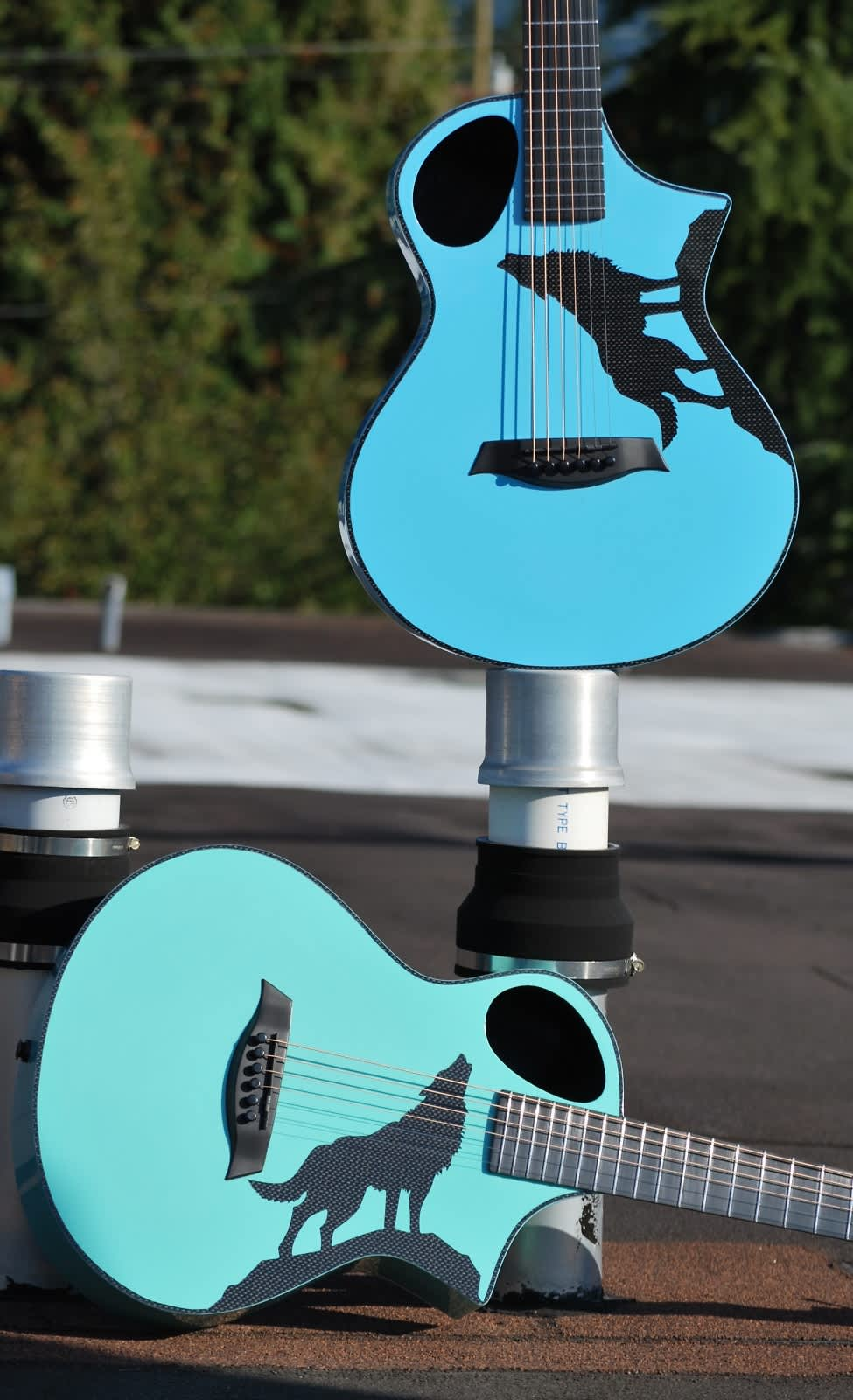 Composite Acoustics Limited Edition Bluedog Howling Wolf