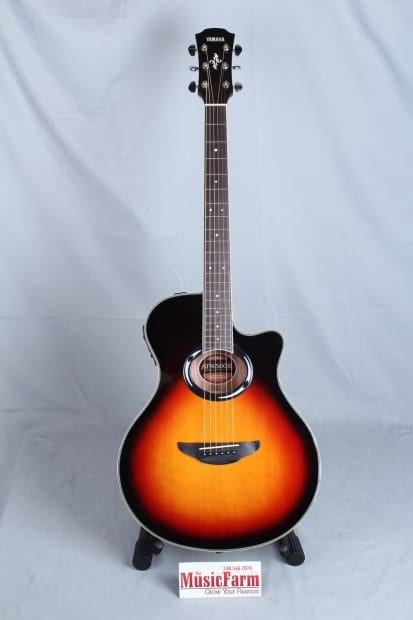 Yamaha Apx500iii Vs Thinline Acoustic Electric Guitar