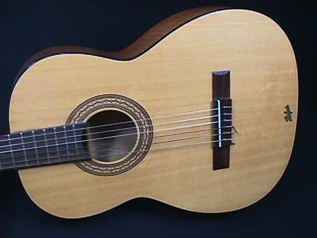 Hofner Solid Wood Classical Guitar In A Chipboard Case