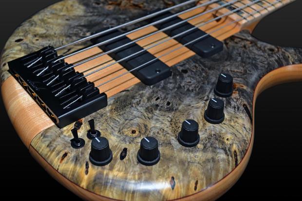 Elrick Bass Guitars Platinum Series 5 Strings E-Volution