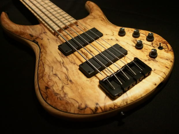 Austin Direct Auto Sales >> MTD 535 (Michael Tobias Design) 5 String Electric Bass ...