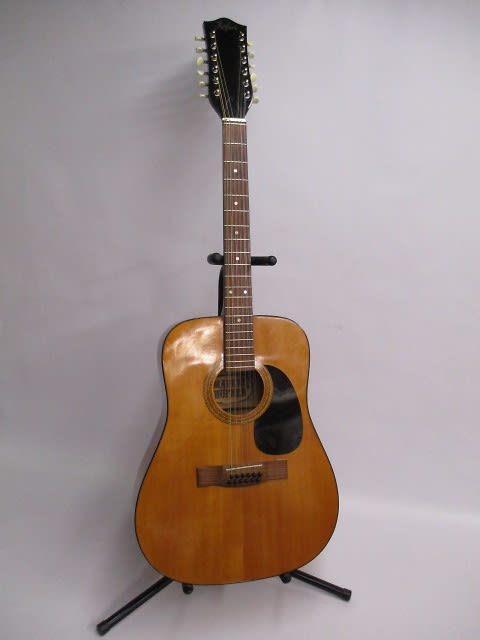 Vintage hofner 12 string acoustic