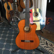 <p>Aria Pro II Classical/Electric Guitar 1980&#039;s Natural Rosewood</p>  for sale