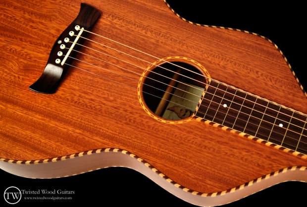 Twisted wood guitars original solid mahogany