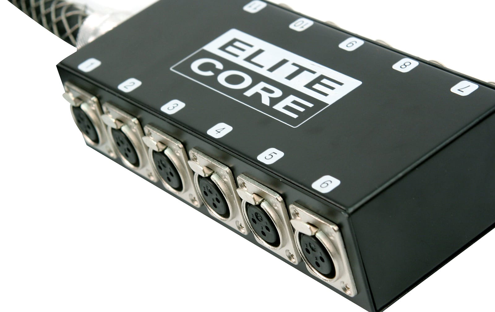 Elite Core PS12030 12 Channel 30' Stage Snake