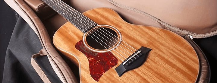 5 Budget Acoustic Guitars with Personality