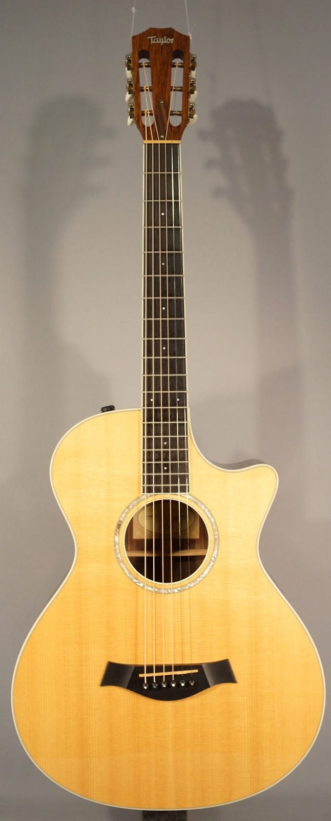 USED! Taylor 12 FRET-ce Acoustic Guitar With Case!