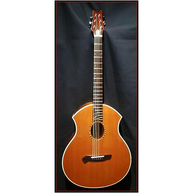 Parker Guitars P8E Acoustic-Electric guitar | Musician's ...