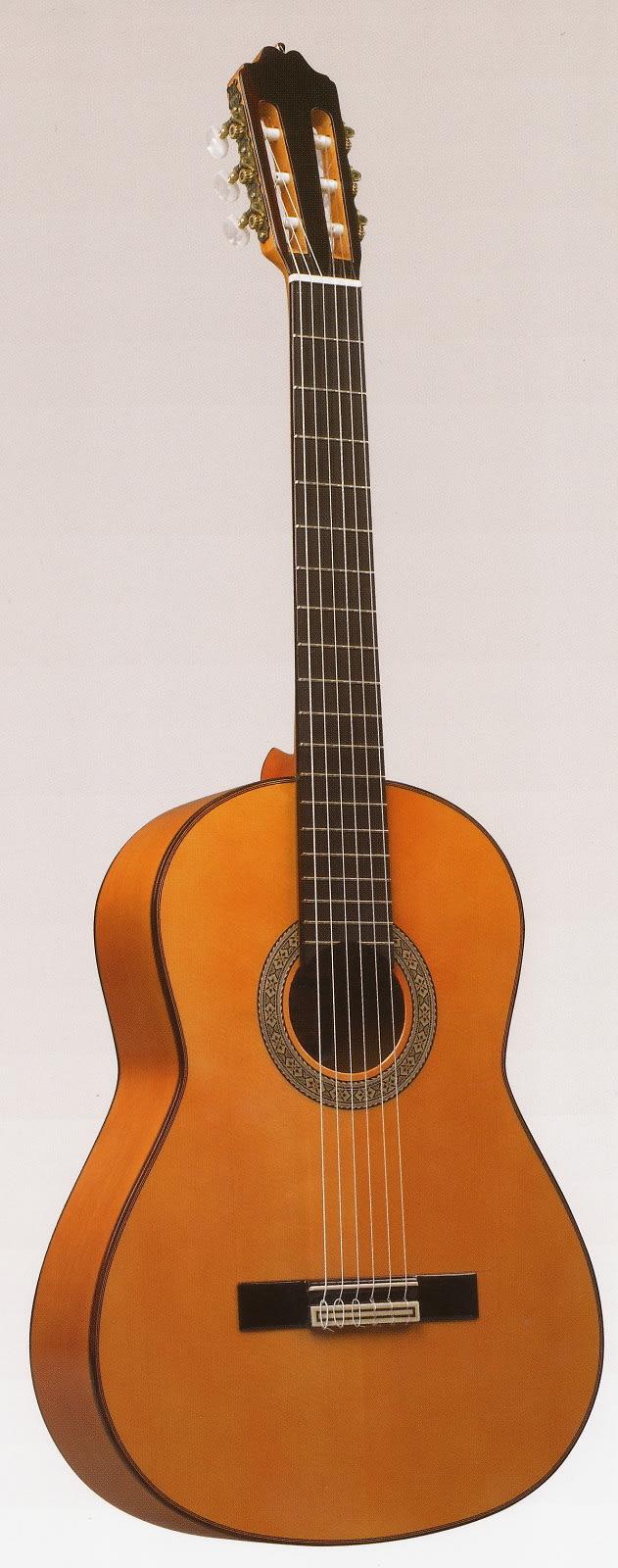 Estevé 9F  Professional Level Flamenco Guitar - Special - Spruce/Cypress