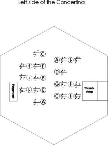 Accordion - Wikipedia