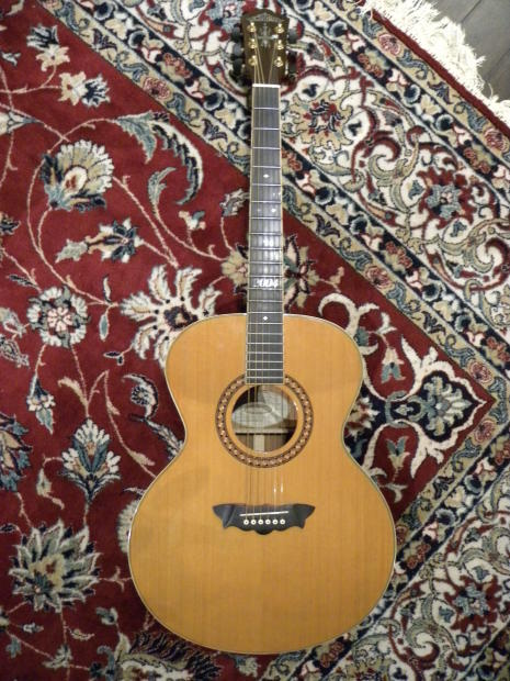 Washburn 2004 Limited Edition Jumbo Acoustic Guitar Very