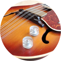 Electric Mandolins