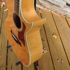 Taylor Lemon Grove 612c Natural 1987 Maple and spruce image