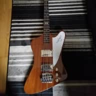 2014 Gibson Thunderbird with Mods - Your Dream T-Bird