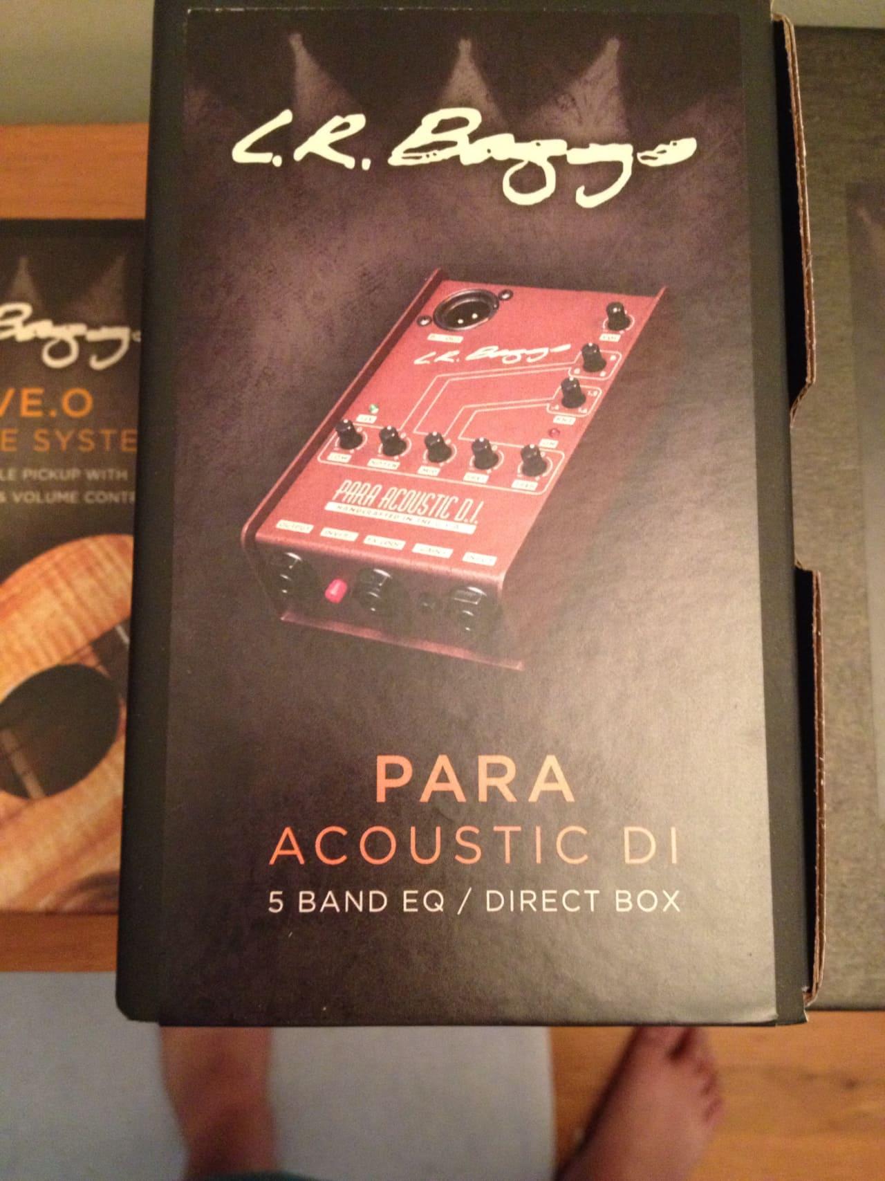 lr baggs para acoustic di manual