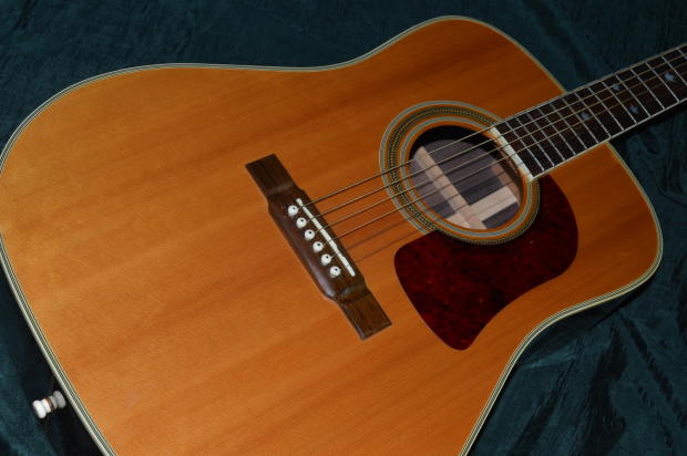 black friday sale very nice 1996 washburn d21 s n dreadnought acoustic guitar with grover. Black Bedroom Furniture Sets. Home Design Ideas