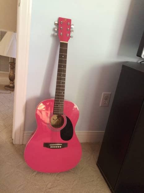 J. Reynolds Acoustic Guitar JR14PK Freferred Instruments ...