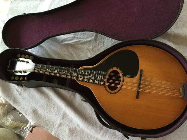 dating gibson mandolins How to date gibson guitars using serial locate the serial number on your gibson for acoustic instruments is an invaluable resource when dating vintage.