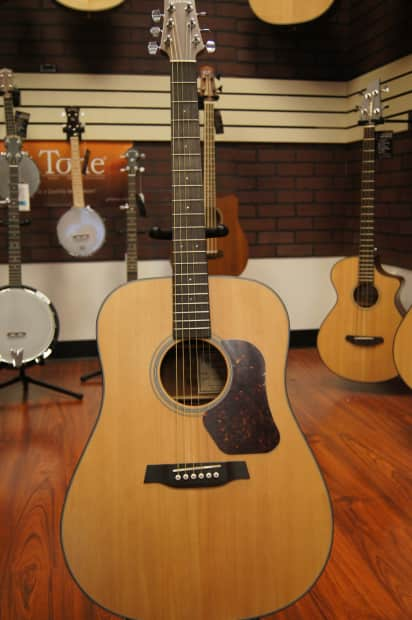 Walden D550 Solid Spruce Top Dreadnought Acoustic Guitar ...