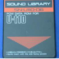 Roland U220 Sound Card SN-U110-06